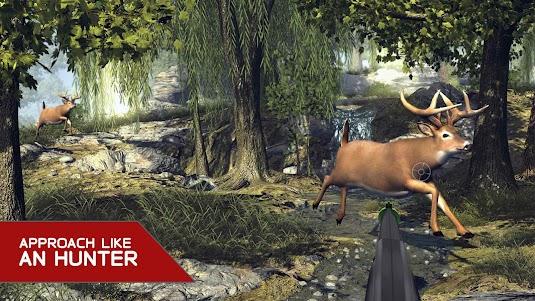 Lion Hunter Wild safari Hunt Deer Sniper Shooter 1.0 screenshot 3