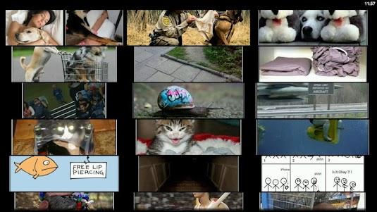 Demotivational Posters 5.1 screenshot 7