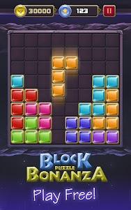 Block Puzzle Bonanza 1.5 screenshot 1
