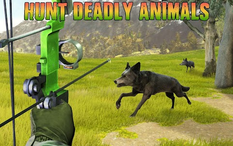 Archery Shooter Animals Hunter 1.0 screenshot 4