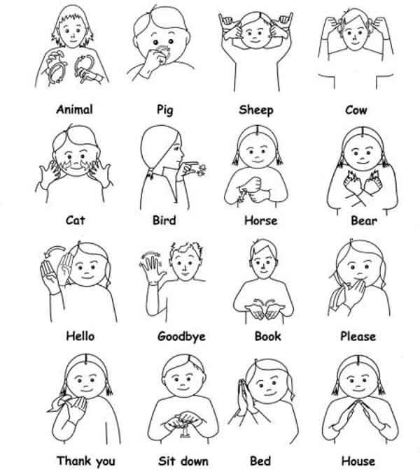 Sign Language for Beginner 1 0 APK Download - Android Lifestyle Apps