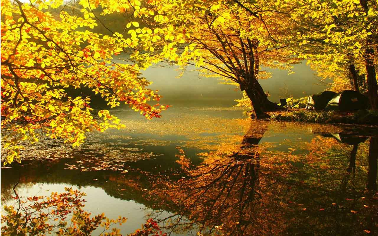 Autumn Live Wallpapers 1.01 APK Download - Android ...