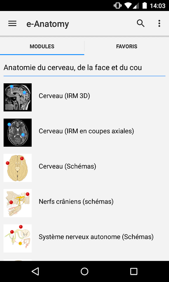 e-Anatomy 4.8.2 APK Download - Android Medical Apps