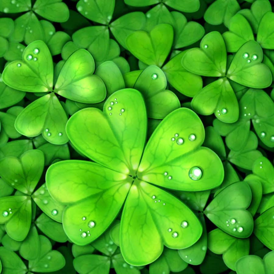 Lucky Charms Live Wallpaper 90 Apk Download Android