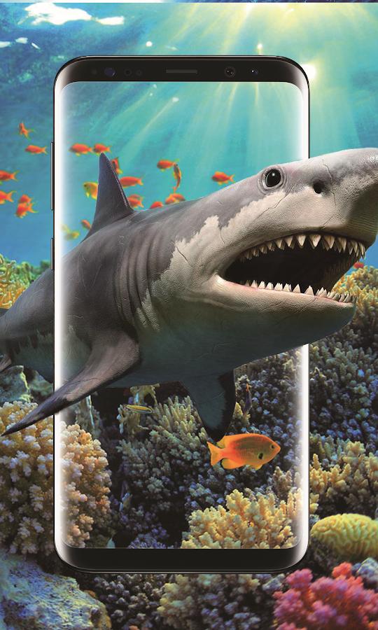 3d Shark In The Ocean Live Wallpaper 11 Apk Download