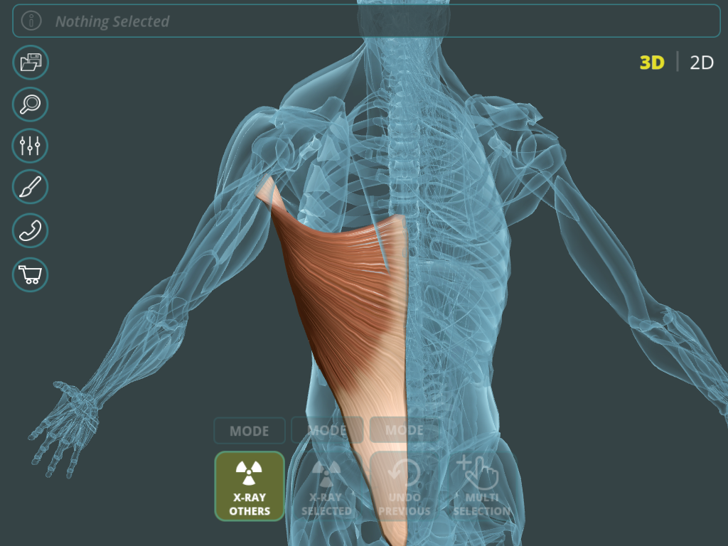 Visual Anatomy 3D | Human 1.2 APK Download - Android Medical Apps