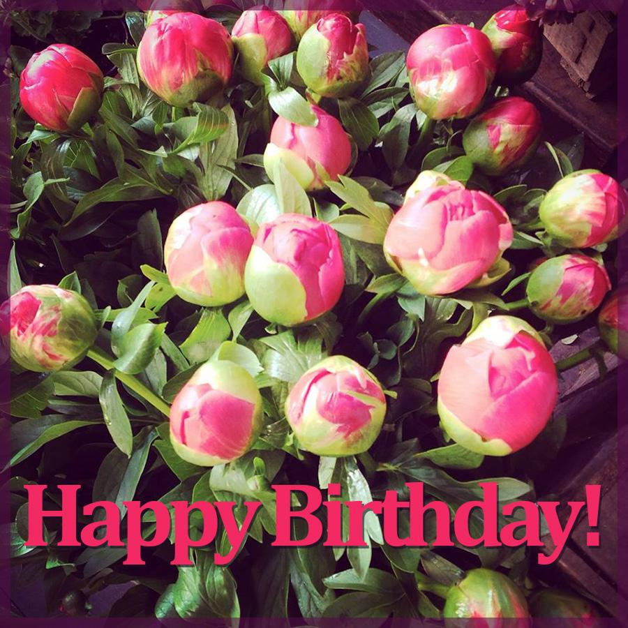 Happy Birthday Flowers Cards For Facebook 50 Apk Download Android