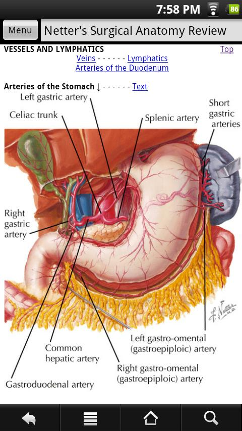 Netters Surgical Anatomy Revi 10 Apk Download Android Medical Apps