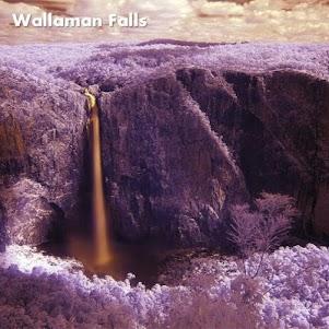 Fantastic Nature Images 3.1 screenshot 7