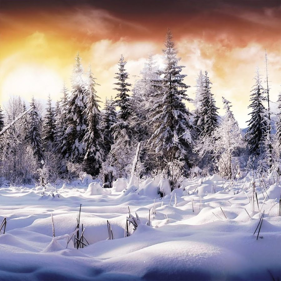 Winter Live Wallpaper 110 Screenshot 3