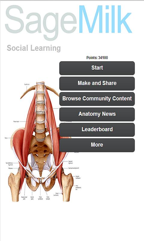 999 Medical Anatomy Terms Quiz 27 Apk Download Android Health