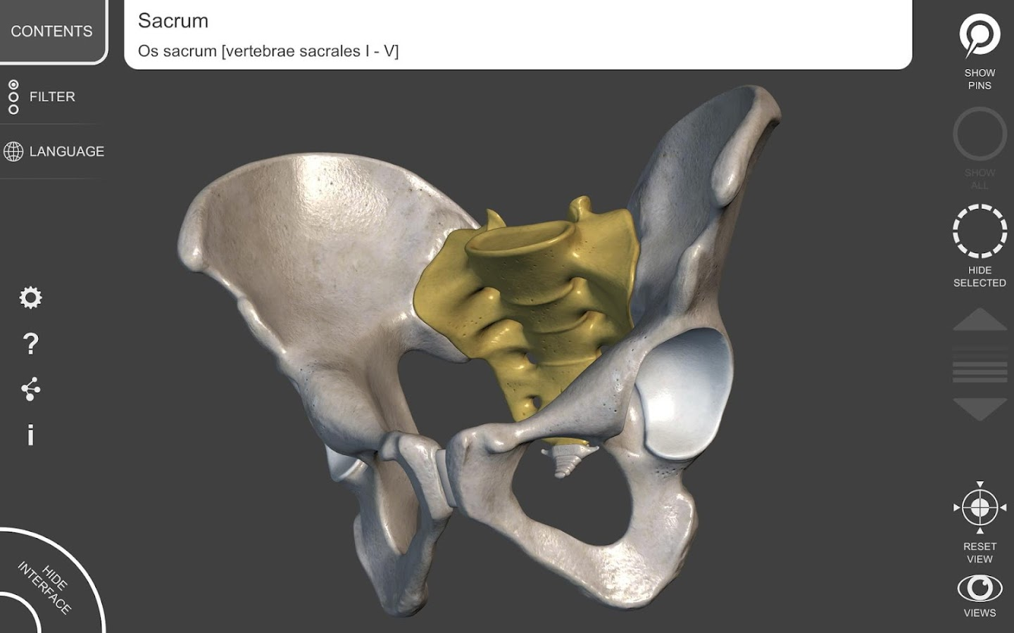 3d Anatomy For The Artist 1271 Apk Obb Data File Download