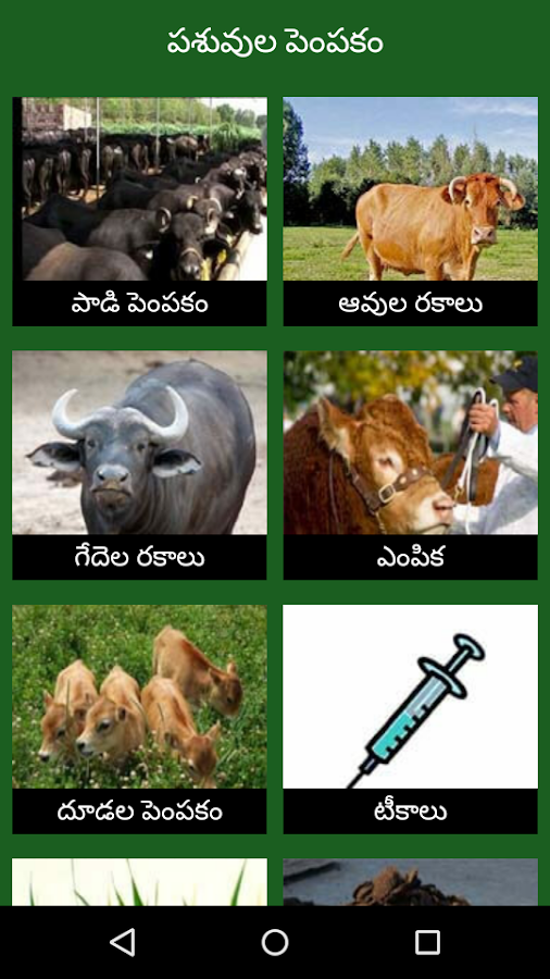 Paadi Parisrama Dairy Farming Telugu 1 0 APK Download - Android